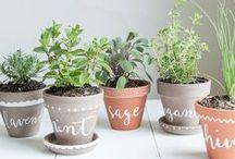 herb garden love / - I am a huge lover of fresh herbs, admiring a few lovely ideas -