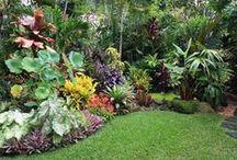 Gardens & Flowers / zahrady, desing