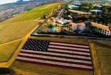 USA / vlajka USA ve všech podobách