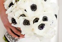 Bouquets - Black