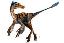 S 恐竜二足歩行系