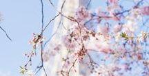 Spring / Toutes mes inspirations pour le printemps ! #spring