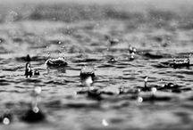 Rain / C'è questo grigio, e piove un po'. E per dare un senso a tutto questo bisognerebbe fare l'Amore. O disegnare faccine sui vetri appannati. - cit.