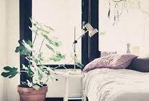 Decoración vital. / Lo último en decoración es dejar que la naturaleza entre a tu hogar. Y no solo estamos hablando de flores y plantas, de lo que se trata es de incorporar muebles y detalles de estilo natural, madera sin tratar o formas orgánicas que rescatan la belleza pura de nuestro universo.Este estilo sencillo y ligero combina con cualquier decoración.