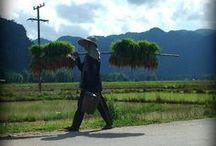 Laos // Lao / Zdjęcia miejsc, ludzi i życia w Laosie - znalezione i moje własne. Inspiracje i wskazówki.