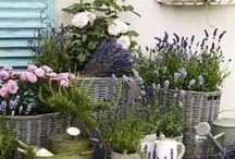 Vintage tuinideeën / vintage tuin, vintage garden, tuin inspiratie, tuin ideeën, tuin.
