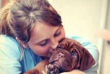 Dog Adoption Tips / Dog Adoption Tips: dog adoption quotes, dog adoption party