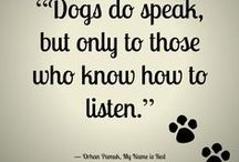 Dog quotes / Get inspired by these dog quotes and have a chuckle with the funny ones.