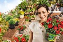 """Pflanzen einfach pflanzen - DIY Inspiration / Inspirierende Deko und DIY-Ideen mit dem COMPO SANA Pflanztopf aus der Bloggerkooperation im Rahmen der Aktion """"Pflanzen einfach pflanzen"""". Alle Inspirationen und Anleitungen sowie unseren großen Fotowettbewerb zur Aktion findest du unter: http://www.compo.de/pflanzen-einfach-pflanzen"""