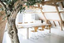Corporate interior - zakelijk interieur / Interieurontwerp | interieuradvies | nieuw interieur | kleurenplan | kleurcombinaties | plattegrond |  3d-visualisaties | interieurontwerper | interieurarchitectuur | interieurarchitect | binnenhuisarchitect