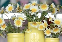Spring Time  / Spring time decor and DIY crafts / by Clever PinkPirate