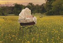 Maternity Pics/baby / by Leah Thomas