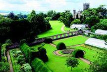 Downton Abbey / by Roberta Hibbison