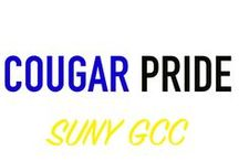 Cougar Pride / Perfect ways to represent our blue and gold!