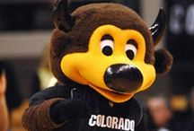 Notable Buffs and Fans / Have you heard of these Forever Buffs, CU-Boulder faculty and staff, and fans?