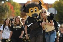 CU-Boulder Bucketlist / Everything you need to do before you graduate from CU Boulder!