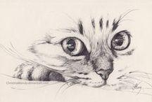 Cats / tolle Dinge für und von Samtpfötchen - DIY, Bilder, Tattoos usw.