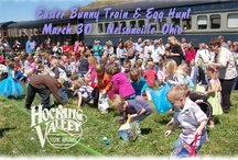 Easter Bunny Train & Egg Hunt / The Easter Bunny Train is a fun family event for kids of all ages! Trains operate at 10:00 a.m. and 1:00 p.m. on March 30 from Nelsonville. During the train ride, the train stops at a secret location where the Easter Bunny will have his prize-filled Easter Egg Hunt! There are prize eggs and candy eggs to be found, sorted by age group. / by Hocking Valley Scenic Railway