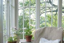 Fönster - Windows