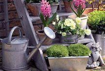 Huerta y jardin