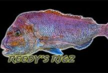Snapper Rigs By Reedy's Rigz W.A Charter Special / Flasher Rigs By Reedy's rigs can be used for surf fishing also. This is Pretty common for Flasher rigs in Australian & New Zealand waters.So when Fishing a Flasher Rig Just tie onto your main line, and attach a star sinker to it and cast into the Surf & You're ready to fish.Flasher Rigs In the surf Are Excellent & I have caught many Australian salmon , Talior , from the surf on Beach's Around Australia The Flasher Works a Treat. Many of my Mate's fish the Rig Also Local Charter Operators'