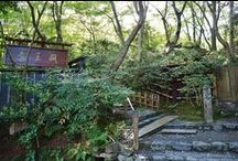 Giouji Temple / If you visit to Arashiyama in Kyoto, We recommend to you go to Giou-ji Temple. You can feel magical beautiful green in Giou-ji temple!