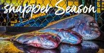 Fishing Melbourne Snapper Rigging & Reports Tackle Port phillip Bay / Australian Snapper fishing Awesome picture's By Reedy's rigz Snapper fishing rig Tackle for Australian fish tackle & more awesome fishing pictures