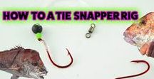 Fishing Rig Tutorial Video Squid Jig  & Rig Tying Beginners Guide /  Fishing Rig Step By Step Tutorial Video Step by Tying Tie Easy Bottom Rigs Easy guide to rigging Terminal Tackle For bait fishing. How to Tie Snapper Whiting Flathead Snell knots Plus many tips Squid Jigs