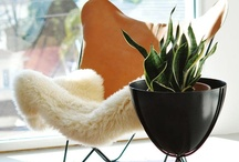 Interior-living space