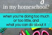 "Homeschool / Ideas for our home-school that will correlate with our curriculum, ""My Father's World""."