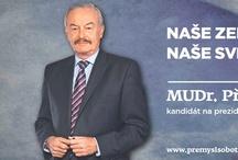 Prezidentské volby ODS 2013