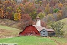 BARNS' / by Deborah Lynch