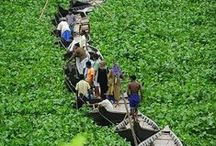 Bountiful Bangladesh
