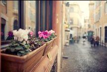 ••Italy••