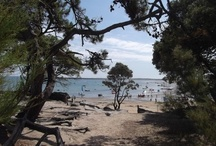 My Ile de Noirmoutier ISLAND FRANCE / Off the Vendee coast and connected by a soaring modern bridge, Noirmoutier is a place where families have holidayed for years, where beautiful pine forests border picturesque beaches.