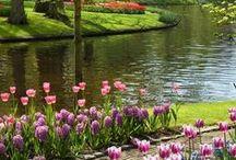 Kevät / Piristykseksi, kevättä odotellessa