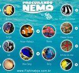 Procurando Nemo na vida real / Os personagens do filme Procurando Nemo foram inspirados em animais reais, confira alguns deles. https://www.aquaa3.com.br/2017/02/procurando-nemo-na-vida-real.html