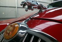 Where soul meets machine. / Cars that make smile