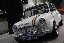 Mini Love / The car that roared