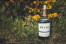 WONDERWORK   Reyka Spring 2015 Foraging Expedition by Wonderworks / Built on inventive spirit of Reyka - one kind of a vodka, made from natural resources of Iceland, we have devised 'Reyka Foraging Expeditions'. Select group of London's best bartenders seasonally embarks on inspiring days of foraging with an expert in remote coastal countryside, riverside and woodland. End the end of the day, the explorers get together in a pop-up bar by a camp fire in the woods and collaboratively create cocktails using the ingredients they had found during the day.