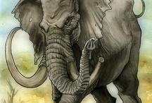 •Mûmakil / Oliphaunts  / elephants