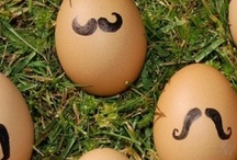 Eggsters