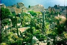 Kauniita puutarhoja - Beautiful gardens
