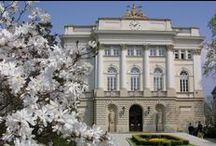 """ERASMUS: Laureat w kategorii instytucjonalnej / Uniwersytet Warszawski za projekt """"USOS – moduł BWZ oraz Mobility – nowoczesne technologie na rzecz rozwoju uczelni."""""""