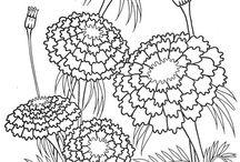 design-pattern-şablon-şema-patron / by TC .Sadıkin