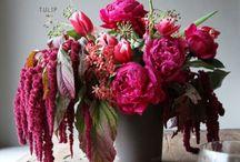 Flower composition / Bouquets Trends Colors