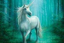Unicorns & Rainbows / ✭ Unicorns, fairies, mushrooms, imps, elves, mermaids, MAGIC then rainbows ✭