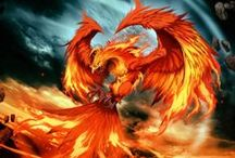 Rise from the Ashes / The mighty Phoenix - logo and mascot for watchTHISbrand.
