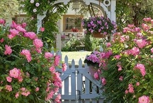 Thru the garden gate... / by Shari Sellers Campbell