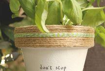 Gardening- ideas for market stall